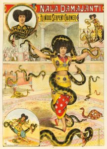 "Der Schlangenbändiger (""The Snake Charmer"") as the ""Hindu Princess"" and her magnificent snakes, ca. 1880s"